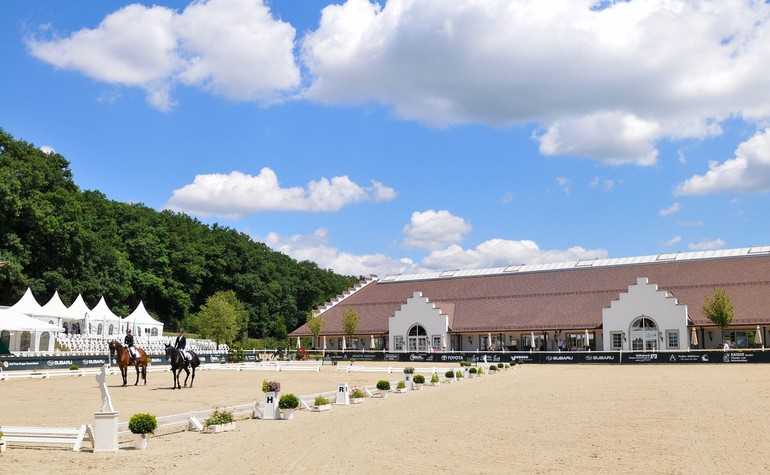 Show jumping from this Thursday on the Hofgut Albführen (GER)