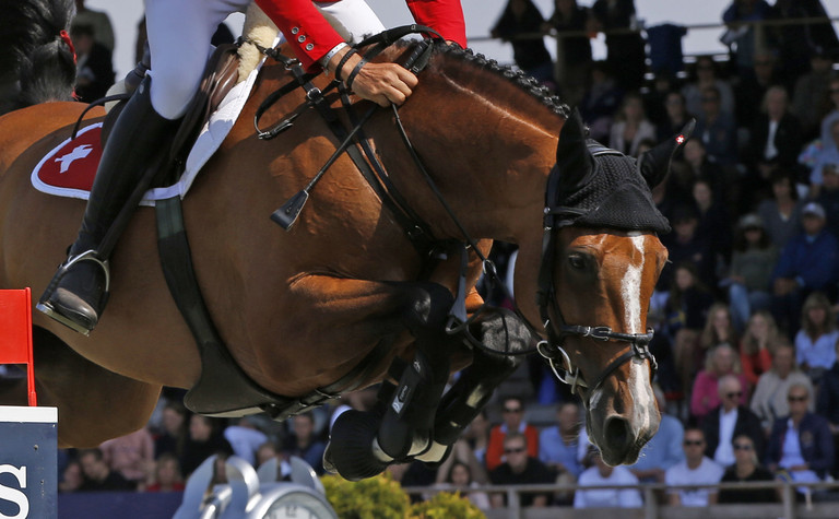 CSIO Falsterbo (SWE): Switzerland in 2nd place!