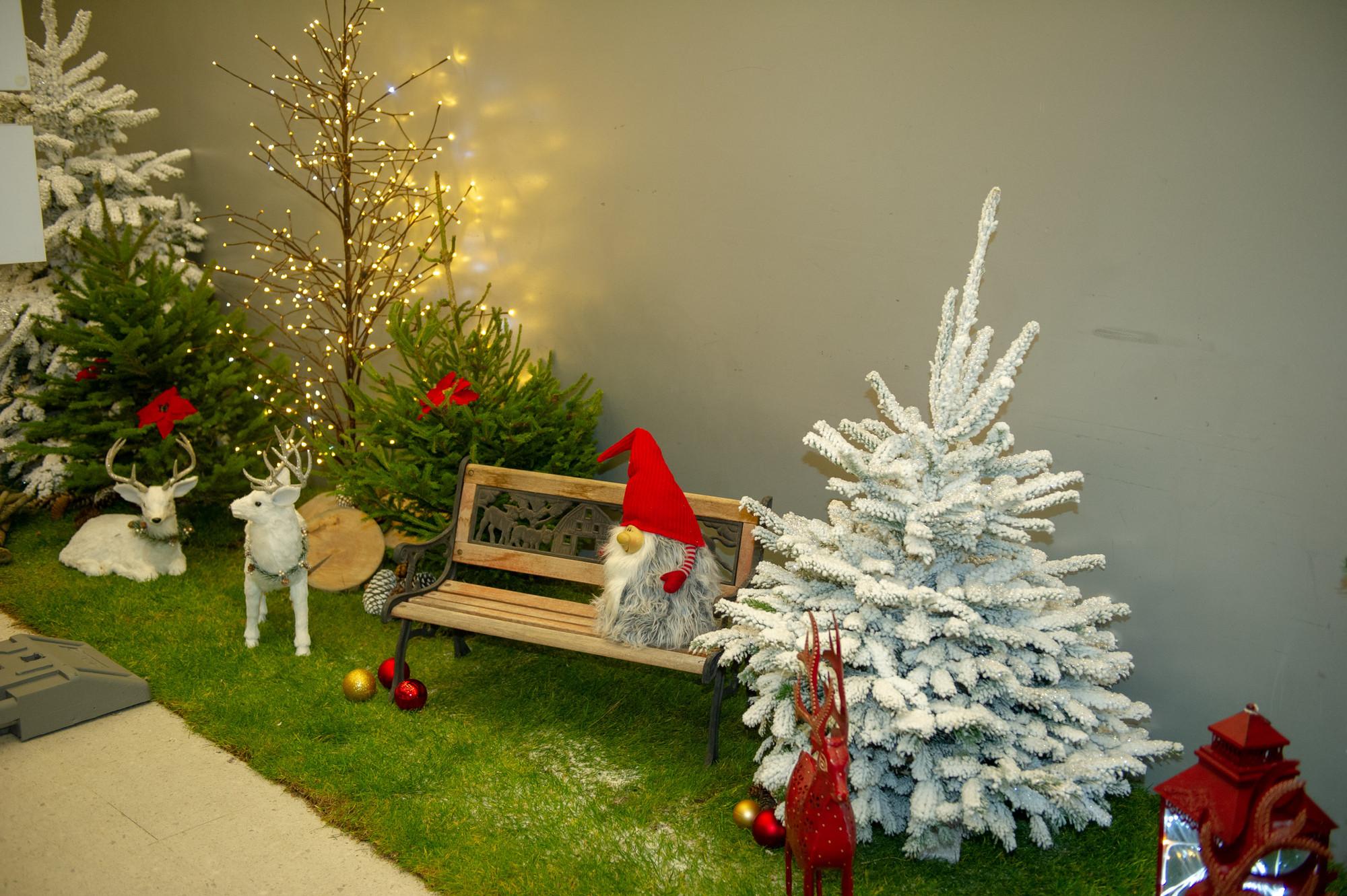 Frohe Weihnachten Schweiz.Frohe Weihnachten Und Ein Glückliches Neues Jahr Steve Guerdat